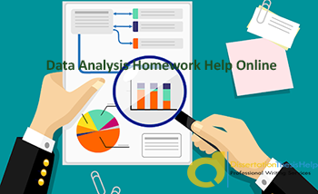 Data Analysis Assignment Services