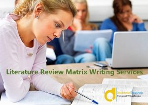 Literature Review Matrix Writing Help